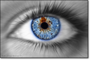 photographers_vision.xlarge